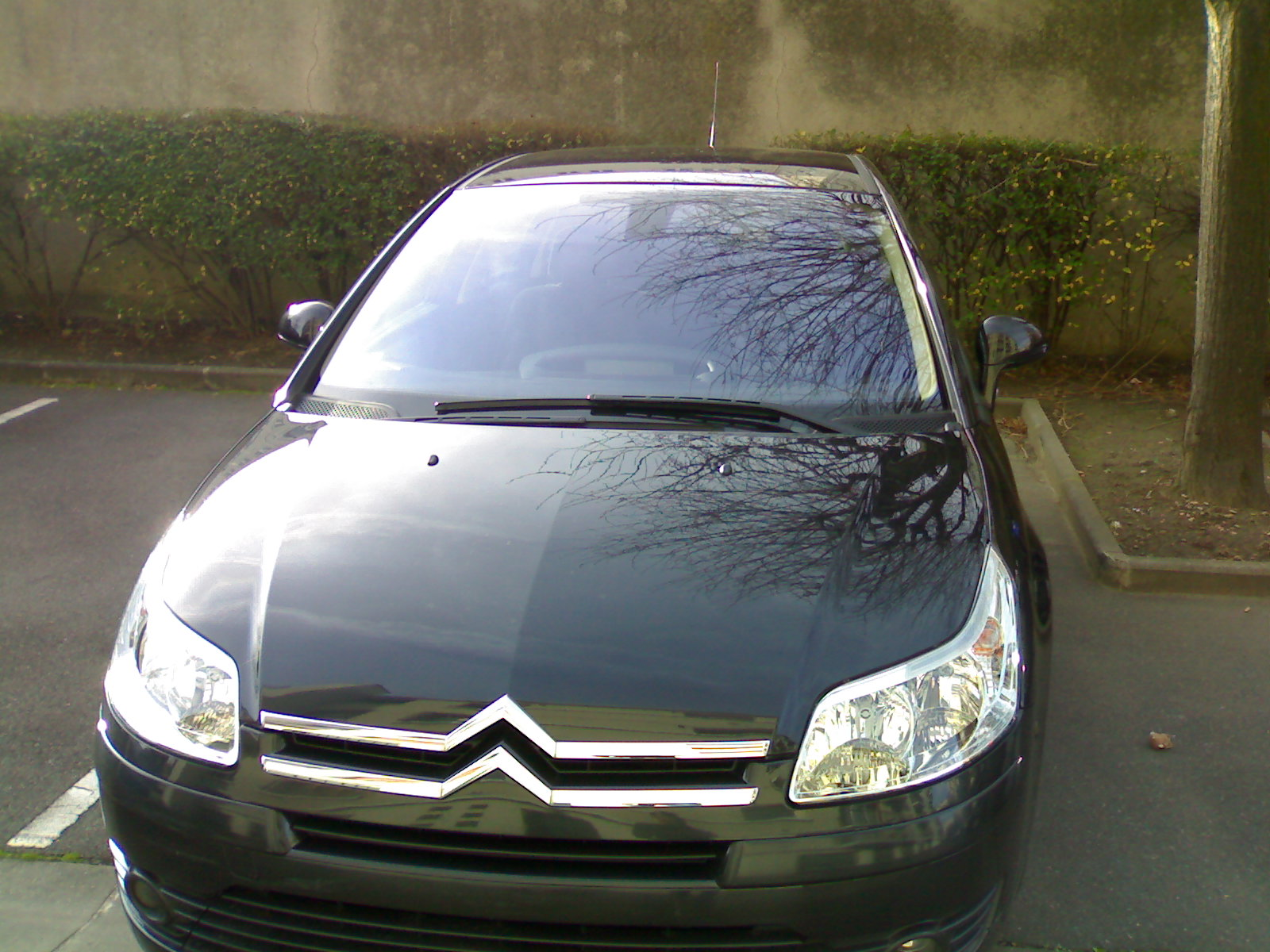 voiture occasion citroen c4 de 2005 49 210 km. Black Bedroom Furniture Sets. Home Design Ideas